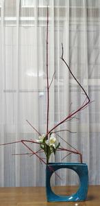 3-5 直線の構成【サンゴミズキ、アルストロメリア】
